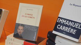 Quatre romans de la rentrée s'invitent en tête des ventes    (Laurence Houot / Culturebox)