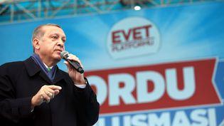 Le président turc Recep Tayyip Erdogan, en meeting à Ordu (Turquie), le 13 avril 2017. (TURKISH PRESIDENCY / YASIN BULBU / ANADOLU AGENCY / AFP)