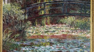 """Le bassin aux nympheas à Giverny"" de Claude Monet, au Chicago institute, en 2016. (PHOTO JOSSE)"