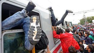 Les migrants se précipitent à bord d'un train en direction de la frontière hongroise à la gare de Tovarnik (Croatie), le 20 septembre 2015. (STR / AFP)