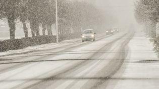 La neige tombe, près deMéteren (Nord), le 9 février. (PHILIPPE HUGUEN / AFP)