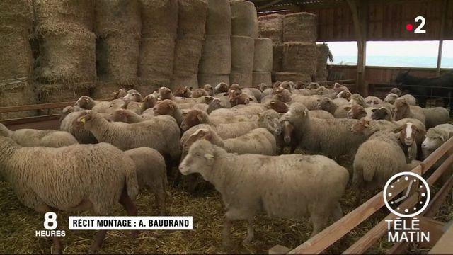 Des communes à vendre en soutien aux agriculteurs