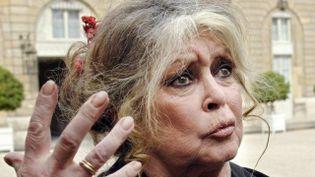 Brigitte Bardot en 2007. (ERIC FEFERBERG / AFP)