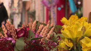 Tendance :les fleurs séchées reviennent à la mode  (France 2)