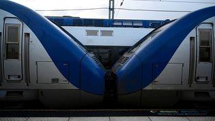 Un TER en gare de Rennes (Ile-et-Vilaine) au cinquième jour de grève contre la réforme des retraites, le 9 décembre 2019. (DAMIEN MEYER / AFP)