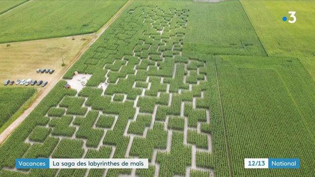 Ille-et-Vilaine : un labyrinthe dans un champ de maïs