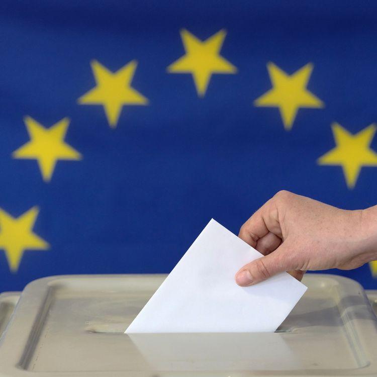 Le scrutin est organisé du 23 au 26 mai 2019 dans les 27 Etats de l'Union européenne. (PETER ENDIG / DPA-ZENTRALBILD / AFP)