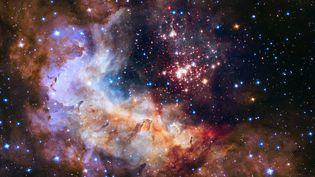 Une photo, prise par Hubble,de l'amas stellaire Westerlund 2 et de la nébuleuse Gum 29, situés à 20 000 années lumières de la Terre. (HUBBLE / EUROPEAN SOUTHERN OBSERVATORY / NASA / ESA / AFP)