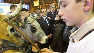 Le président de la République François Hollande visite le salon de l'Agriculture, à Paris, le 25 février 2017. (MAXPPP)