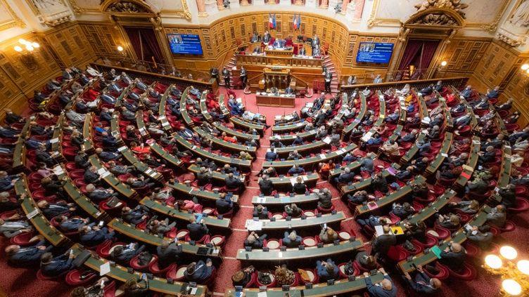 Une session du Sénat, le 14 avril 2021 à Paris. (SANDRINE MARTY / HANS LUCAS)