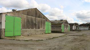 Les poulaillers industriels de l'élevage avicole, le 1er avril 2016. (BENOIT ZAGDOUN / FRANCETV INFO)