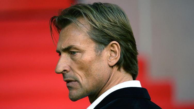 Hervé Renard n'est (déjà) plus le coach du LOSC (DENIS CHARLET / AFP)