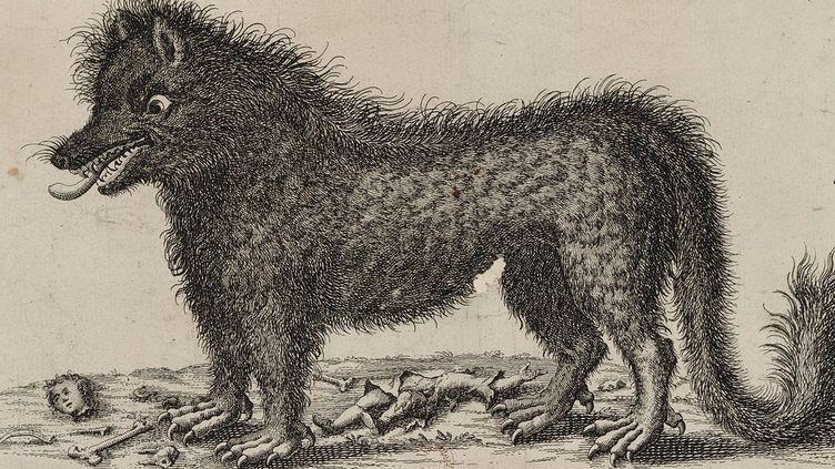 Image de la bête du Gévaudan (1764)  (DR)