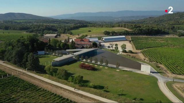 Culture : le château La Coste fait trôner l'art au milieu des vignes