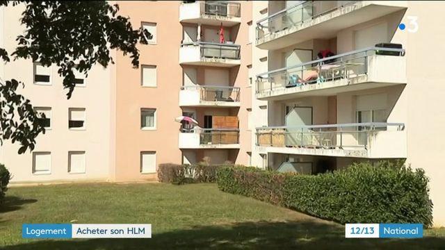 Immobilier : acheter son HLM