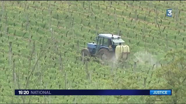 Gironde : les pesticides affectent la santé d'une école entourée par les vignes