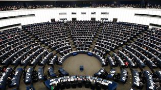 Les eurodéputés réunis, le 12 mars 2014 au Parlementeuropéen de Strasbourg. (FREDERICK FLORIN / AFP)