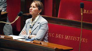 La ministre de l'Ecologie, Ségolène Royal, à l'Assemblée nationale, le 26 mai 2015. (CHARLES PLATIAU / REUTERS)