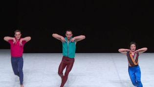 Le spectacle Lil'Acta du chorégraphe Yuval Pick. (FRANCEINFO)