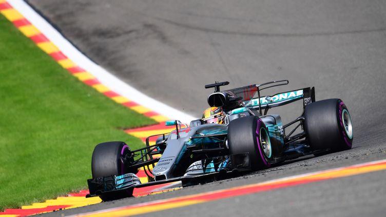 Lewis Hamilton (Mercedes) sur le toboggan des Ardennes (EMMANUEL DUNAND / AFP)