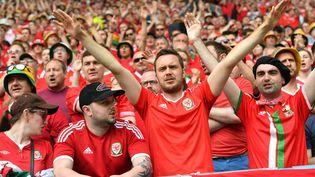 Des supporters gallois, le 11 juin 2016 à Bordeaux (Gironde) pour le match de l'Euro Pays de Galles-Slovaquie. (VLADIMIR PESNYA / SPUTNIK / AFP)