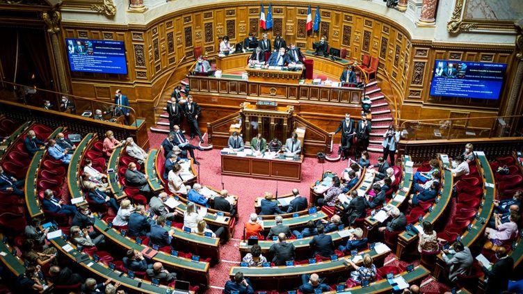 Une vue panoramique du Sénat, le 21 juillet 2021 à Paris. (XOSE BOUZAS / HANS LUCAS)