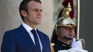 Emmanuel Macron à l'Élysée, le 18 juillet 2017. (IAN LANGSDON / EPA)