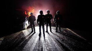 Des gendarmes interviennent pour évacuer les zadistes de Notre-Dame-des-Landes (Loire-Atlantique), le 9 avril 2018. (LOIC VENANCE / AFP)