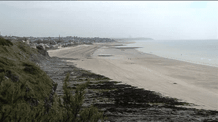 L'une des plages de Saint-Pair-sur-Mer (Manche) à nouveau frappée d'interdiction de baignade, mardi 29 juillet. (FRANCE 3 BASSE-NORMANDIE)