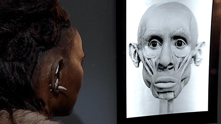 Le travail d'Elisabeth Daynès. Deux étapes de la néandertalienne.  (France 3 / Culturebox)