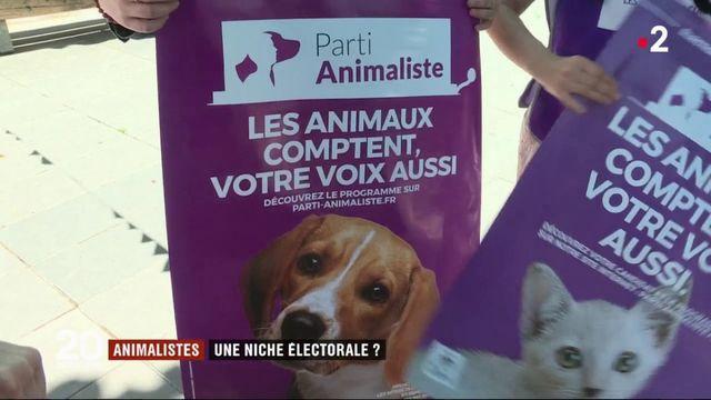 Parti animaliste : lumière sur l'une des surprises des Européennes 2019