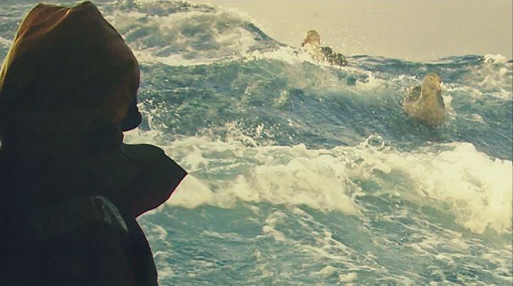 Un marin contemplant la mer  (France 3 / Culturebox / capture d'écran)