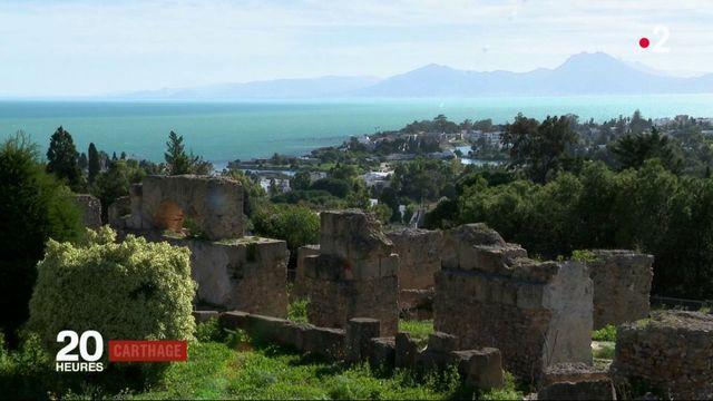 Tunisie : il faut sauver Carthage, menacée par les promoteurs