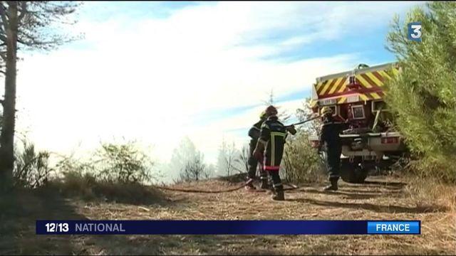 Corse : 4 600 hectares partis en fumée