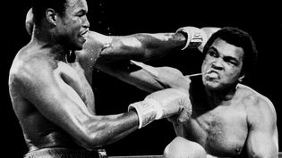 Mohamed Ali (à droite) affronte Larry Holmes (à gauche) à Las Vegas (Nevada), le 2 octobre 1980. (UPI)