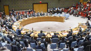 La Russie et la Chine utilisant leur veto, le 28 février 2017, pour bloquer une résolution des Nations unies visant à sanctionner l'utiisation d'armes chimiques en Syrie. (ONU / AFP)