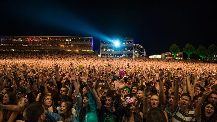 Foule de spectateurs assistant à un concert live au Paleo Festival de Nyon en Suisse, 2014. (LIONEL FLUSIN / GAMMA-RAPHO)