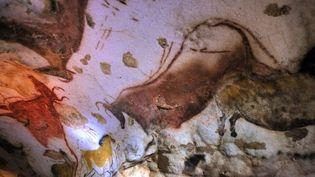 Les méthodes de préservation de ce trésor de l'humanité font débat.  (Philippe Wojazer / Pool / AFP)