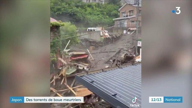 Japon : un gigantesque glissement de terrain fait au moins deux morts