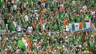 Des supporters irlandais, le 26 juin 2016 à Lyon. (ALAIN GROSCLAUDE / AFP)