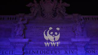 Le logo du WWF projeté sur la basilique Saint-Pierre, à Rome, en 2016. (VINCENZO PINTO / AFP)