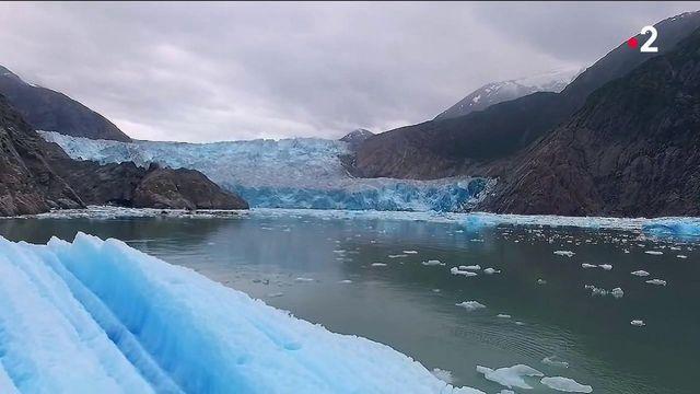 Alaska : le merveilleux sanctuaire des baleines à bosse
