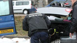 Contrôle routier anti stupéfiants en 2010 (VIRGILE / LE DAUPHIN? LIB?R? MAXPPP)