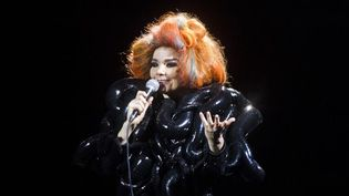 Björk au Roskilde Festival, au Danemark (8/7/2012)  (Malte Kristiansen / Scanpix Denmark / AFP)