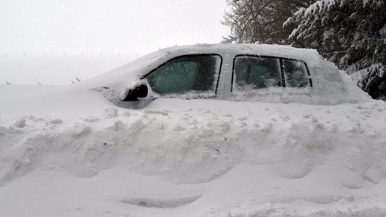 Une tempête de neige s'est abattue dans le massif du Pilat, sur la commune de Planfoy (Loire), le 3 février 2019. (PHILIPPE VACHER / MAXPPP)
