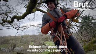 """VIDEO. """"Mon métier, c'est avant tout connaître les arbres au lieu de les couper bêtement"""", explique Karine (BRUT)"""