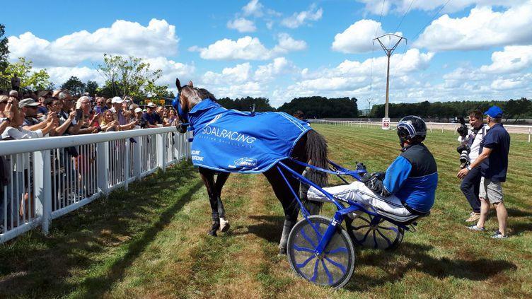 Timoko, le cheval star du trot est acclamé par la foule à Langon en Gironde. (FLORENCE PERUSIN/RADIO FRANCE)