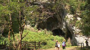 La Gourgue d'Asque est un lieu insolite : une gorge étroite au cœur des Hautes-Pyrénées où la végétation ressemble à celle d'une jungle tropicale. (CAPTURE D'ÉCRAN FRANCE 3)