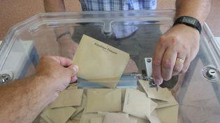 Les élections départementales auront lieu les20 et 27 juin prochains. (JEAN-FRAN?OIS FREY / MAXPPP)