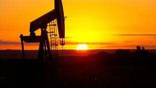 Puits de pétrole à Tioga dans le Dakota du Nord (USA). (KAREN BLEIER / AFP)